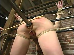 Babydoll dominated in the stocks